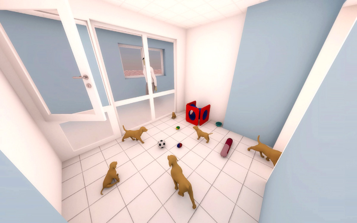 Bath Cats and Dogs Home new kennel block